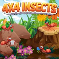 4×4 Insects