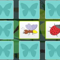 Kids Memory – Insects