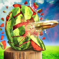 Watermelon Shooting 3D